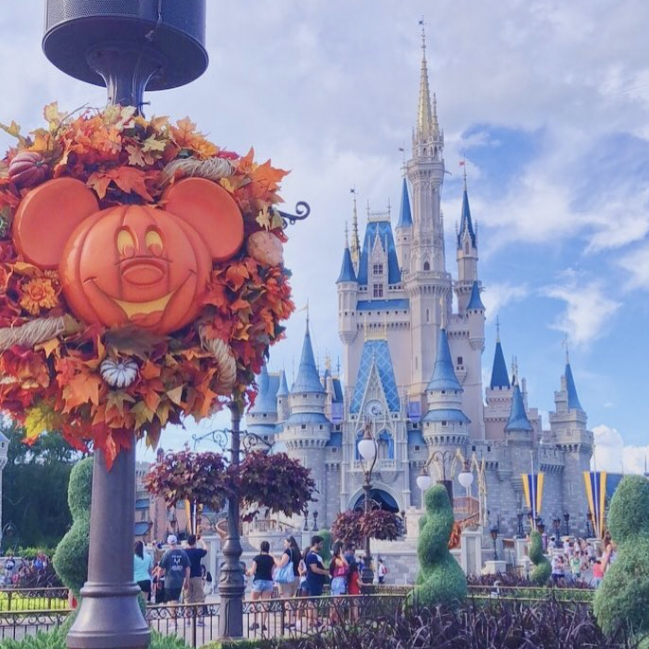 Pumpkin Mickeys take over the Magic Kingdom every year!