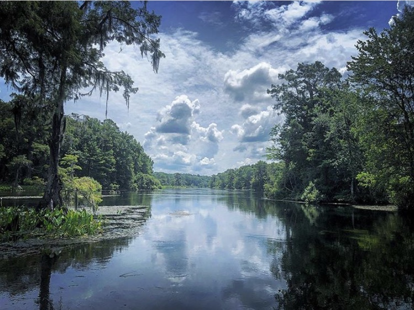 Edward Ball Wakulla Springs
