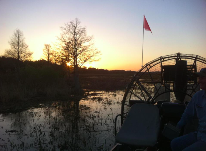 Boggy Creek Airboat Adventures Picture from a Night tour