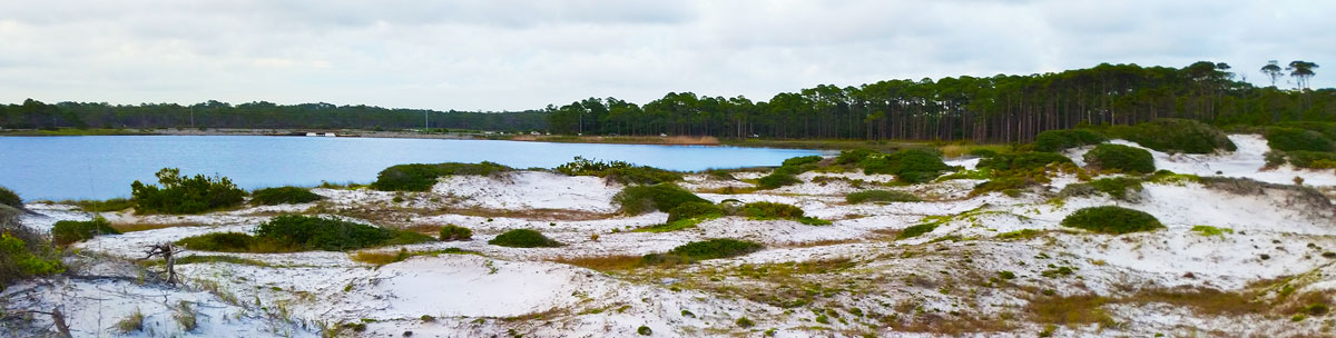 Western Lake view at Grayton Beach State Park