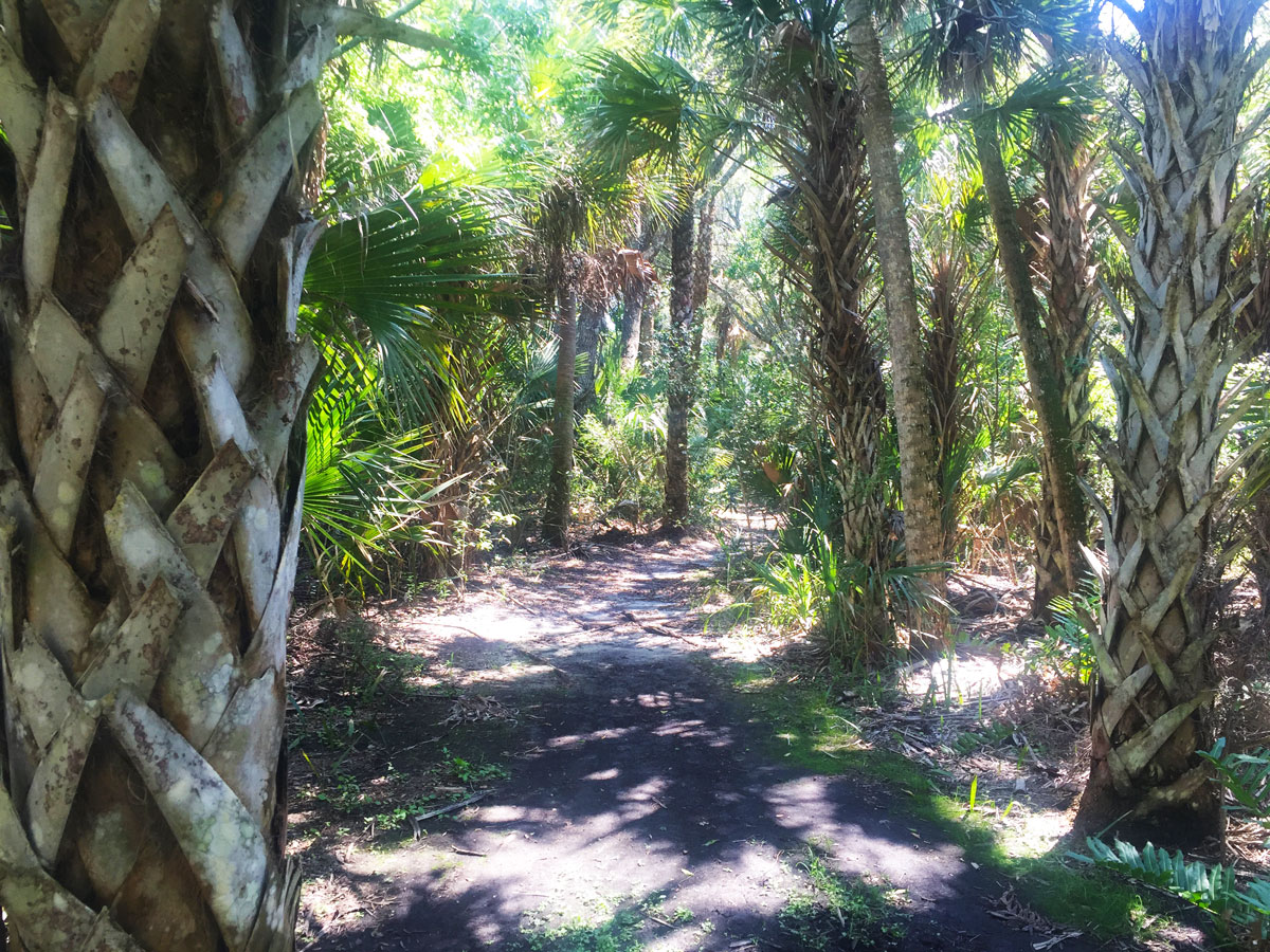 Canaveral National Seashore Trails