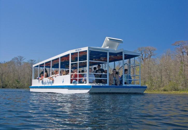 Wakulla Springs State Park Boat Tour