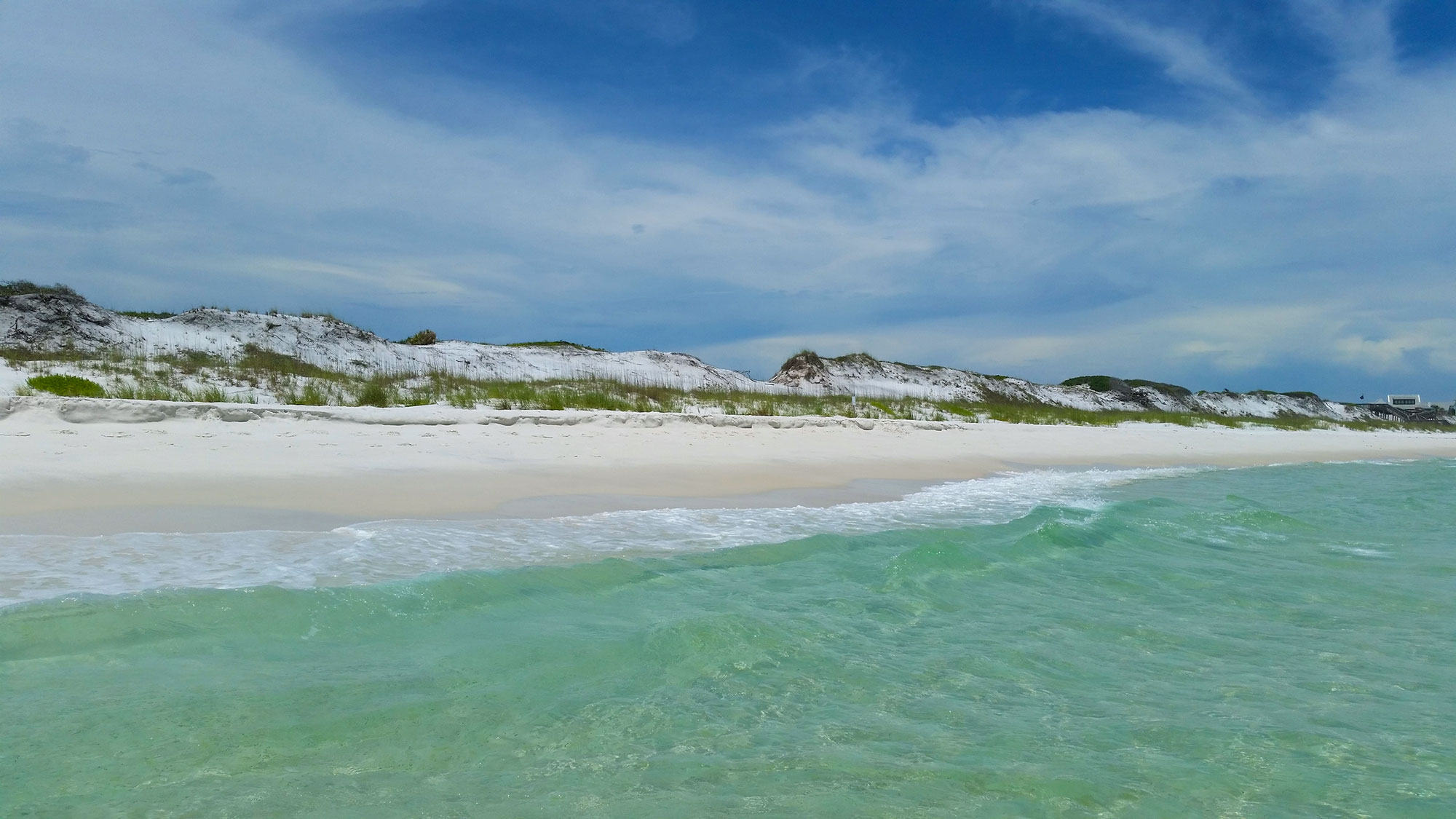 Grayton Beach State Park Florida Smart