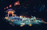 Florida's Fascinating Circus History