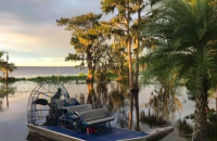 Black Hammock Adventures & Airboat Rides Boat Photo