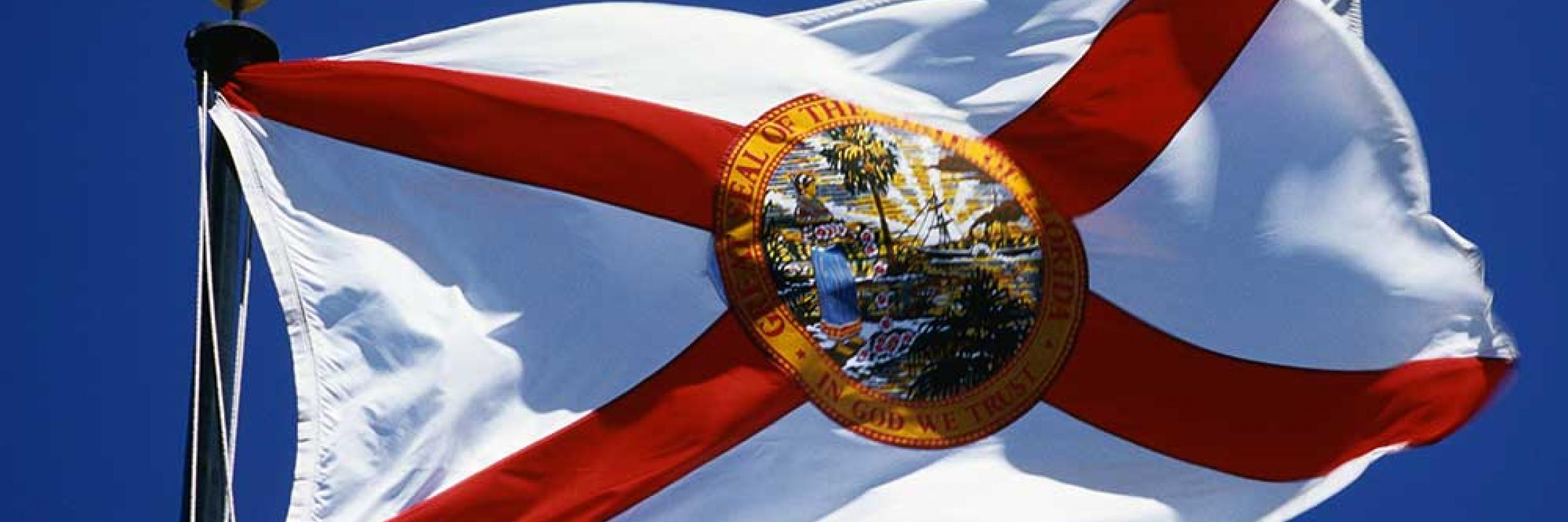 Florida's Government Executive Branch
