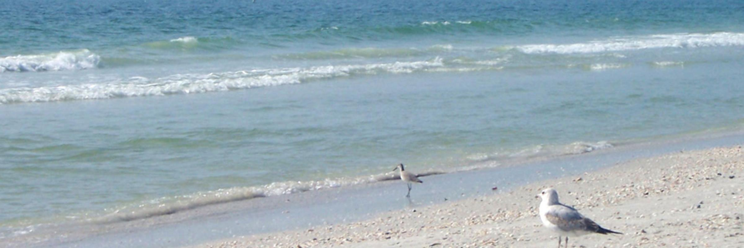 Central West Florida Region Beaches