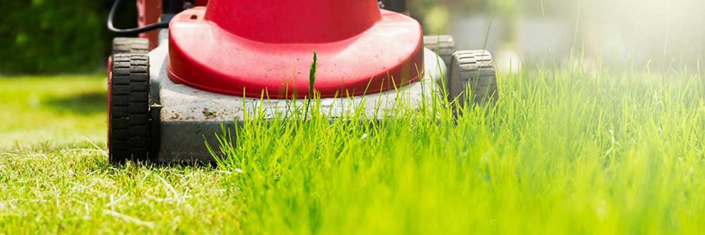 Florida Lawncare & Sprinklers