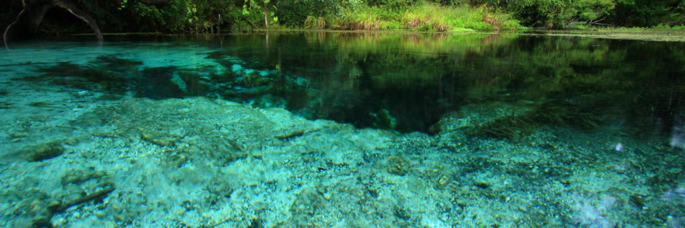 Clear Blue Spring Water