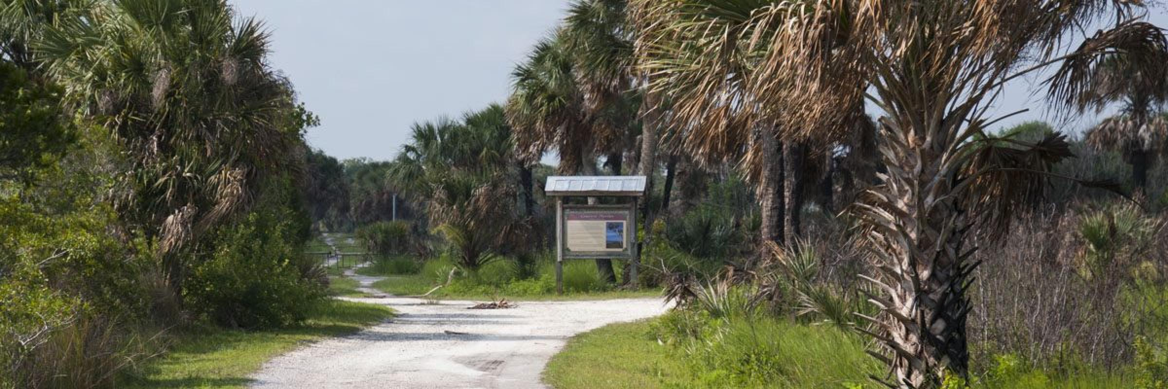 Canaveral Marshes Conservation Trailhead