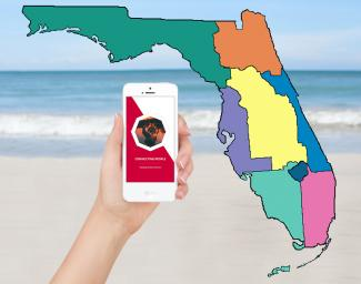 5 SEO Tips for Florida