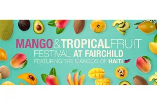 The International Mango and Tropical Fruit Festival