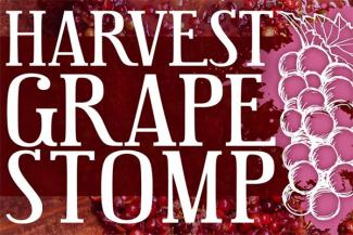 Harvest Grape Stomp